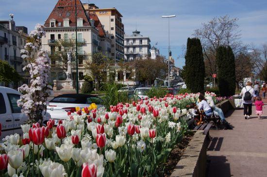Blomster i Evian