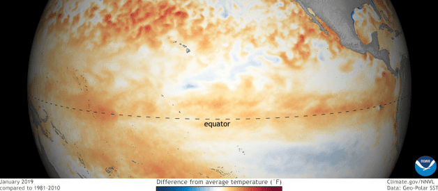 El Niño Officially Declared