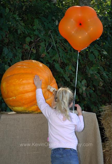 Pumpkins and balloons at the Salt Spring Island Fall Fair. Saltspring Island, British Columbia, Canada