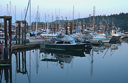 Ganges Harbour, Salt Spring Island, British Columbia