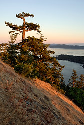 Mt. Norman, Gulf Islands National Park of Canada, South Pender Island