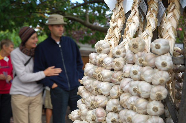 Garlic for sale at the Salt Spring Island Saturday Market located in Ganges