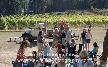 Dancing at the Saturna Island Family Estate Winery fall harvest