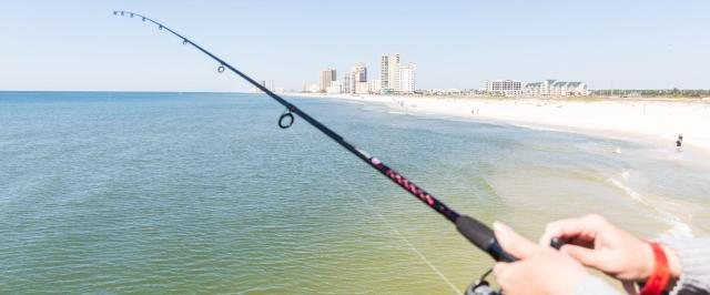 Gulf Shores AL fishing