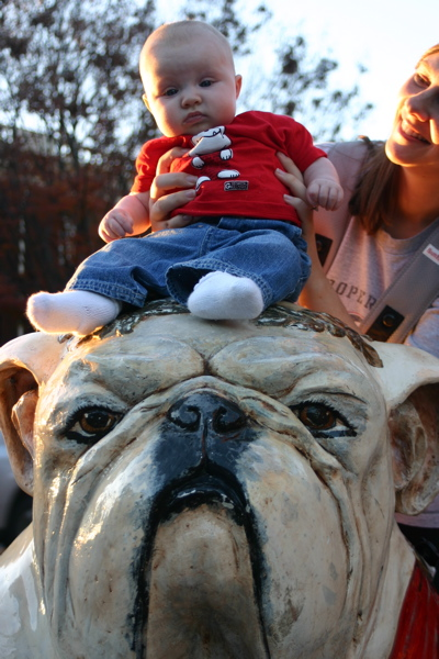 Baby on a Bulldog