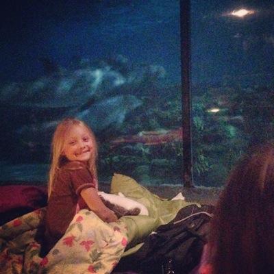 In the Dolphin Exhibit