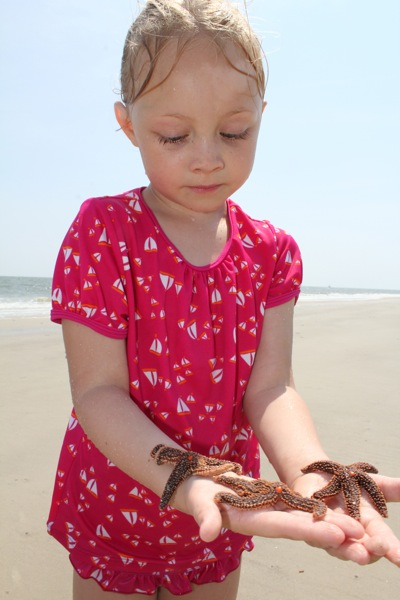Saving Sea Stars