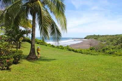 My Tica under a palm tree