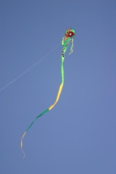 Our Kite