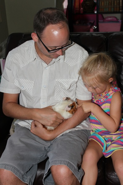 The Arrival of Piglet