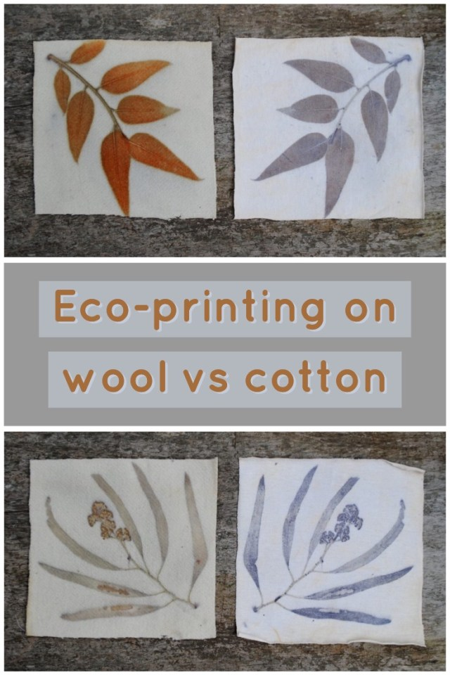 Comparisons of eucalyptus leaves eco-printed on wool versus cotton
