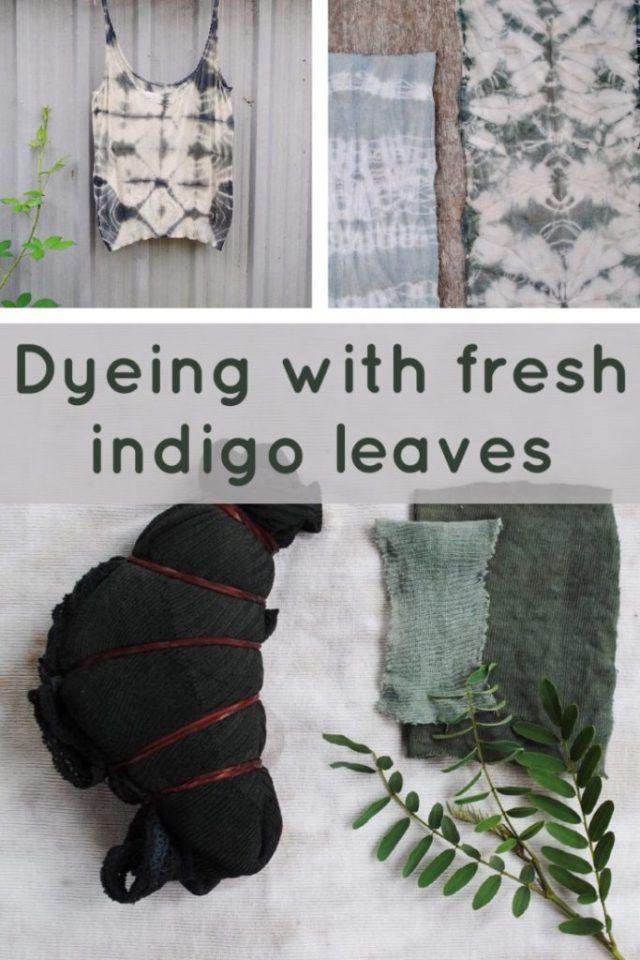 Shibori dyeing with Indigofera Australis