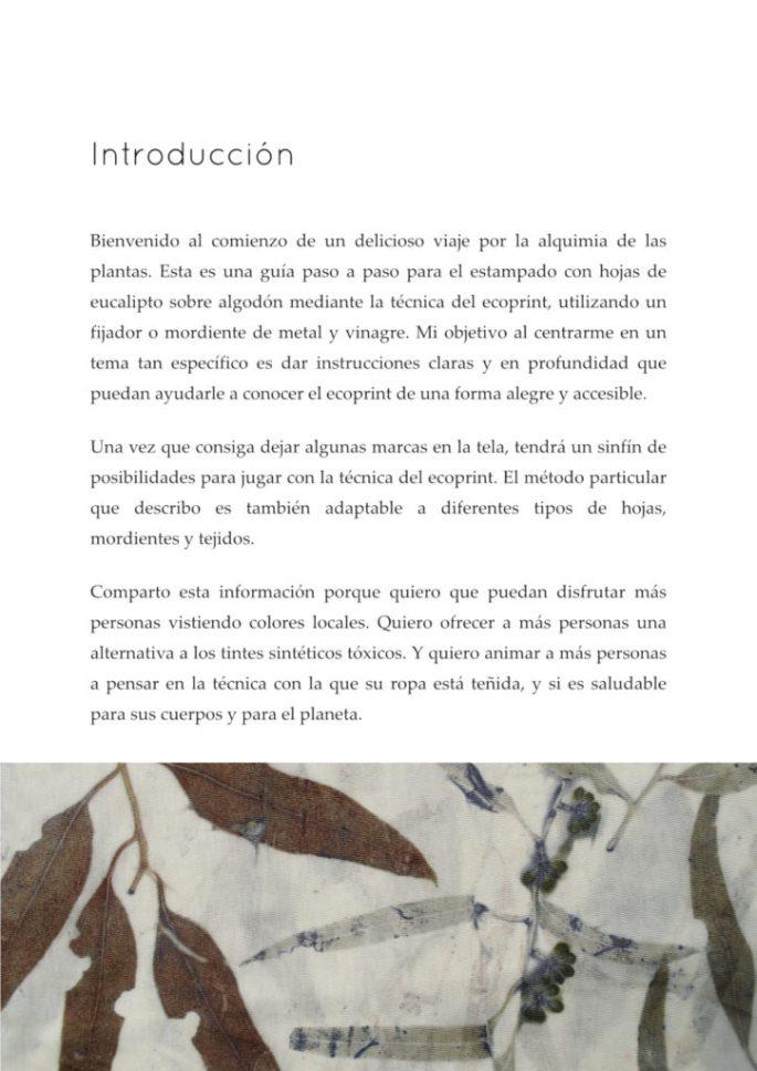 Alquimia del eucalipto - introducción - por Louise Upshall