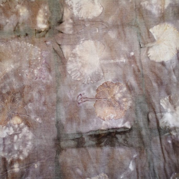 Discharge eco-printing: Geranium leaves and logwood on cotton