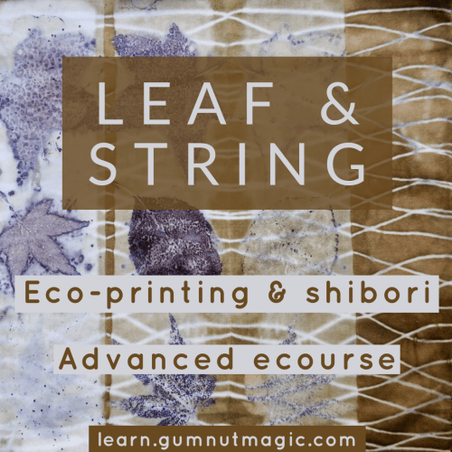 Eco-print and shibori ecourse