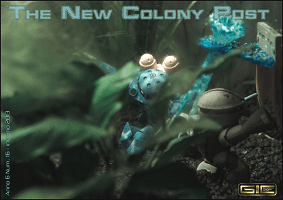 The New Colony Post N. 16