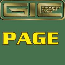 Giochi GIC