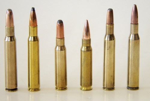 It is believed by many shooters that blunt-nosed bullets are the better choice when hunting in dense brush, but the author found no substantial difference between the performance of those bullets and pointed styles, the latter of which typically possess considerably higher ballistic coefficient values.