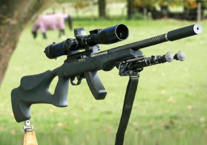 Custom Ruger 10 22 Semi Auto Rimfire Rifle Reviews Gun