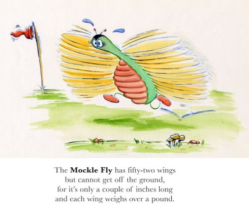 the-mockle-fly
