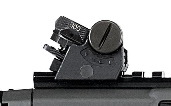SIG 551A1 sights