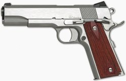 Dan Wesson Razorback 10mm: To Be Reintroduced In 2012