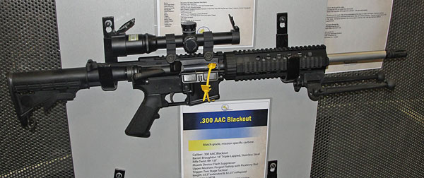 Armalite 300 BLK Rifle