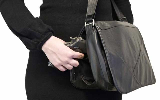 Hide and Chic holster purse