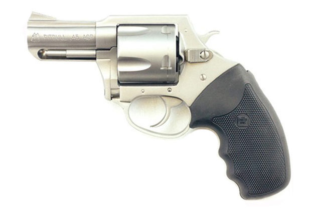 Charter Arms Pitbull in  45 ACP