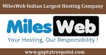 Milesweb Hosting Company