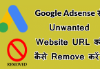 Remove unwanted Website URL from Google Adsense