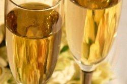 Vinipedia ile Köpüren şaraplar ve şampanya tadım atölyesi