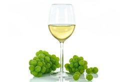 Sauvignon Blanc Günü