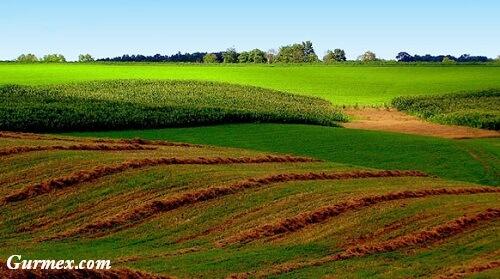 topraklar-tehlike-altinda-surdurulebilir-cevre