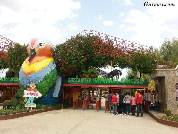 gaziantep-hayvanat-bahcesi-safari-park-nerede-nasil-gidilir-giris-ziyaret-saatleri-ucretleri-gezi-rehberi