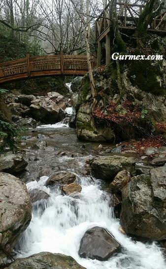 samandere-selalesi-duzce-mesire-piknik-dogal-bahce-dere-selale-nehir-alanlari-yerleri