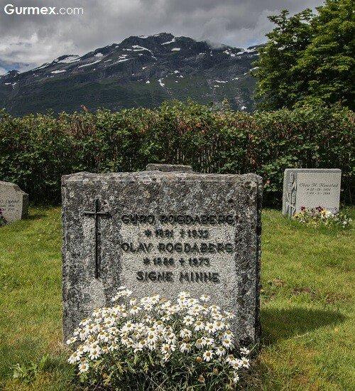 norvec-bergen-oslo-bodo-gezi-rehberi