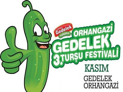 Yemek festivalleri, Orhangazi Gedelek Turşu festivali