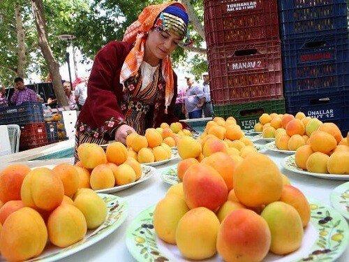 Yemek festivalleri, Mut Karacaoğlan kayısı festivali Mersin