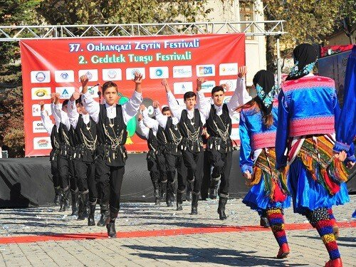 Yemek festivalleri, Orhangazi zeytin festivali Bursa