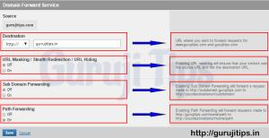 Domain Forward Details