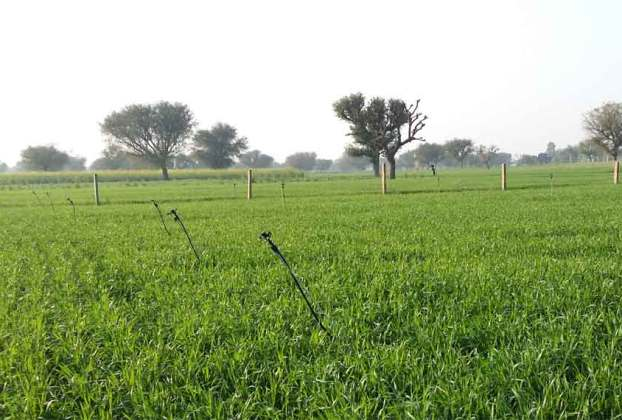 Agriculture Property for Sale Buy Jaipur Agriculture Land for Sale in Jaipur