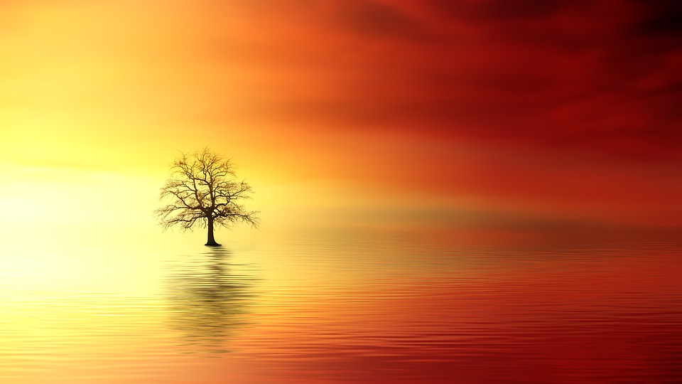 sunset-apps-gratuitas-pixabay