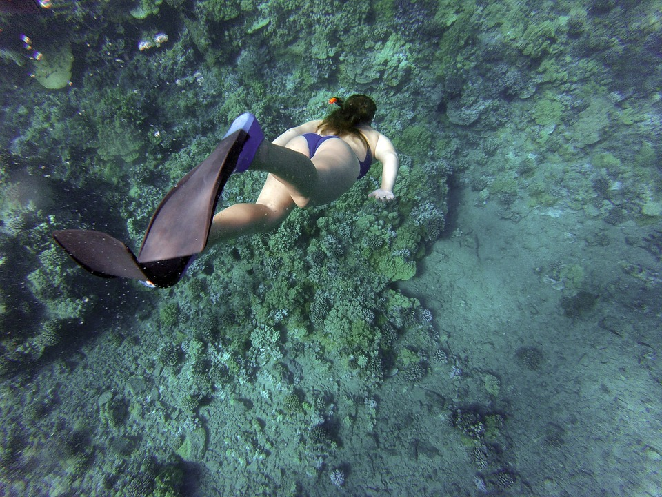 snorkeling-cámara-acuática