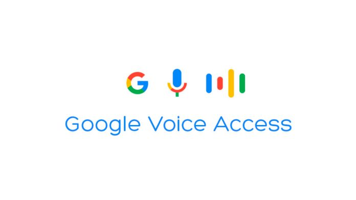 Google-Voice-Access