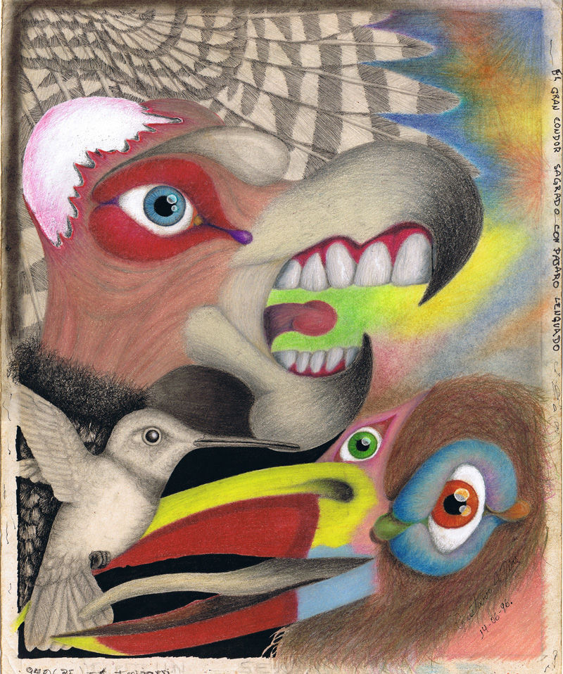 Dibujo: Gran Condor Sagrado con pájaro lenguado   por Gustavo A. Díaz G.