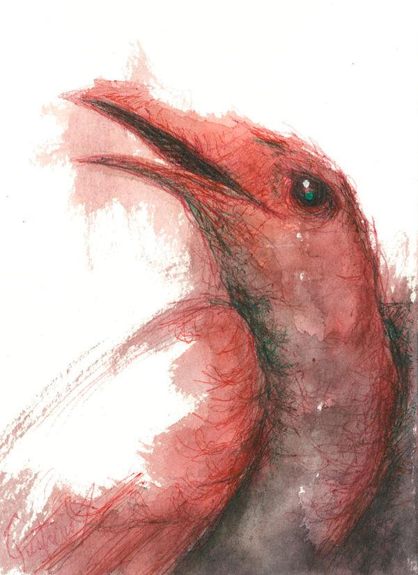 Dibujo: Biliares { Furias } B3 | por Gustavo A. Díaz G.
