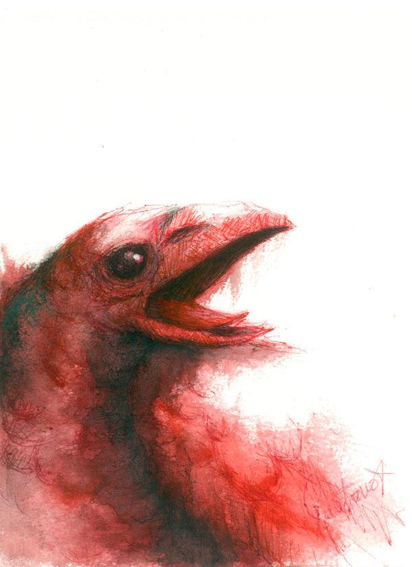 Dibujo: Biliares { Furias } B5 | por Gustavo A. Díaz G.