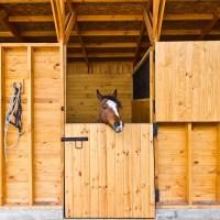 Establos para caballos: Función e importancia