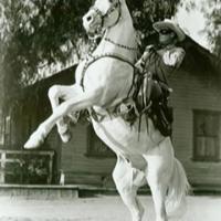 Silverel caballo del Llanero Solitario